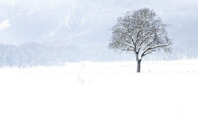 """""""If I should die among the snow"""" – a Winter Conventicle, Closeburn – SFH080"""